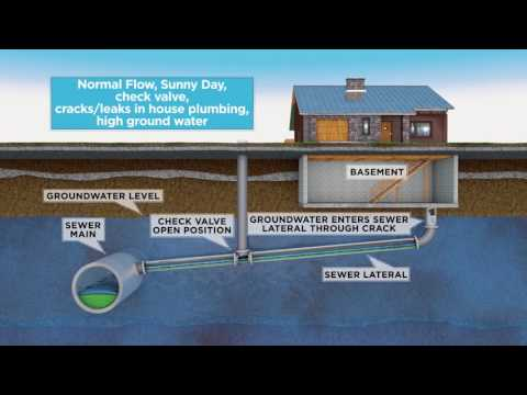 msd:-sewer-surcharge-with-backflow-device-(bad-plumbing)
