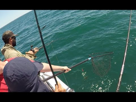 Party Boat Fishing July 2018 - Seabass, Fluke And Kenny's Surprise Catch?