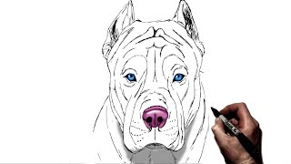 How To Draw A Pitbull | Step By Step