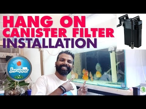Hang On Back Canister Filter Installation || HOB Filter || Discus Fish Tank Filter