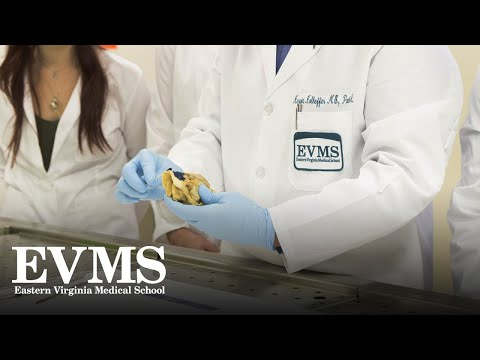 Master of Pathologists' Assistant program overview
