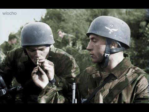 A II. Világháború - Monte Cassino