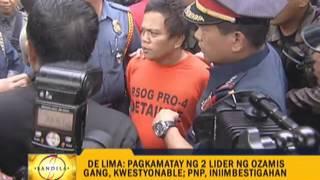 Irate De Lima wants probe on gang leader's slay