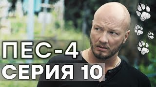 Сериал ПЕС - 4 сезон - 10 серия - ВСЕ СЕРИИ смотреть онлайн | СЕРИАЛЫ ICTV