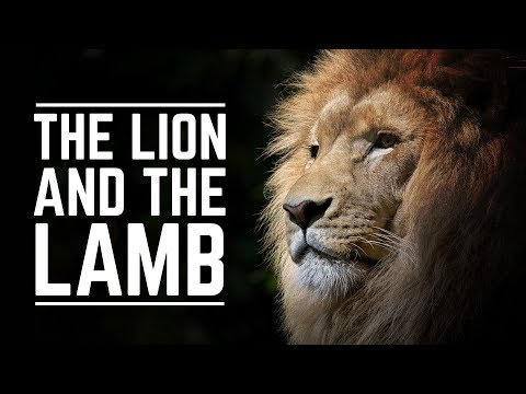The Lion and The Lamb Karaoke Background Track