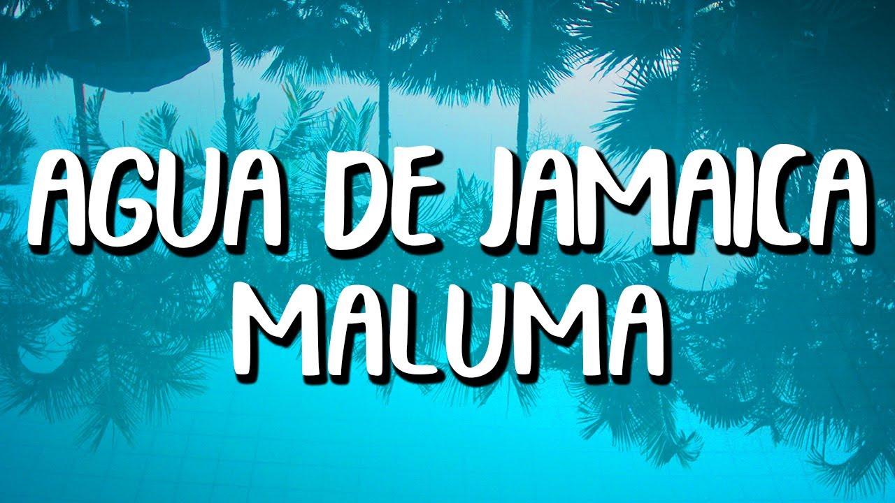 Maluma Agua De Jamaica Letra Lyrics Youtube