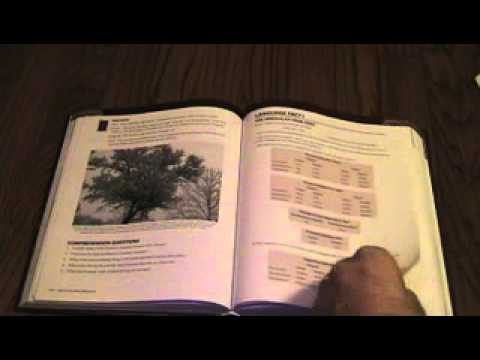 latin:-beginners'-materials-3/4