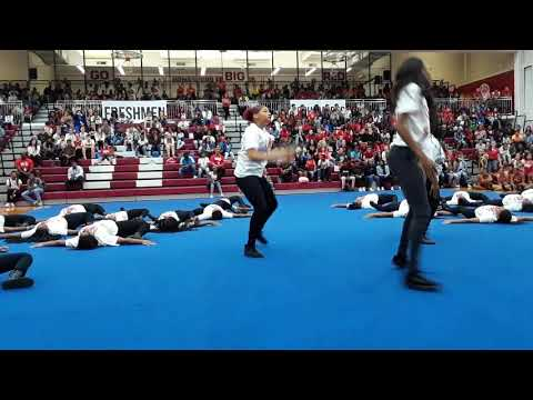 Steppers & tug of war, at Homewood Flossmoor high school, pep rally 2019