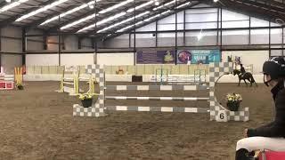 Daimond Z Scotland 2019
