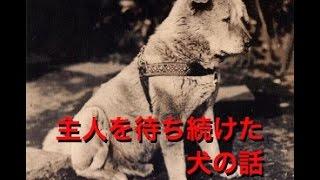 亡くなった飼い主の帰りを、約9年間もの長い間渋谷駅で待ち続けた秋田...