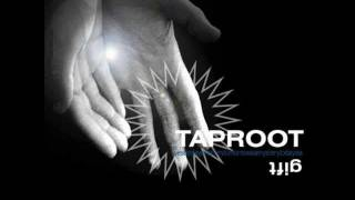Watch Taproot Now video