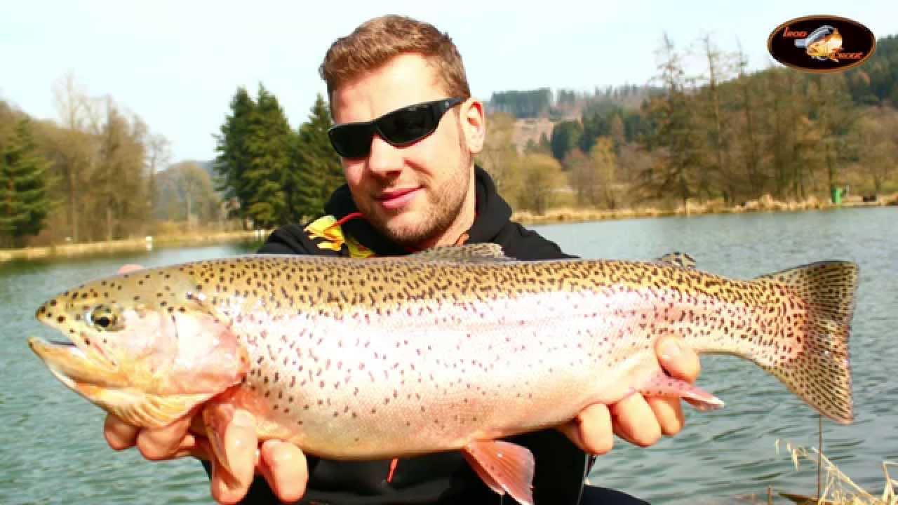 Sänger Iron Trout Chakka HCX Premium Tremarella-Rute Forellenfischen Tremarella