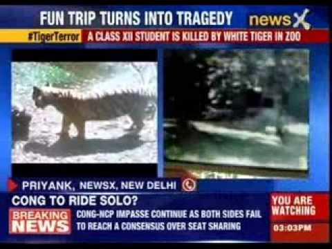 Teenager mauled to death in Delhi zoo
