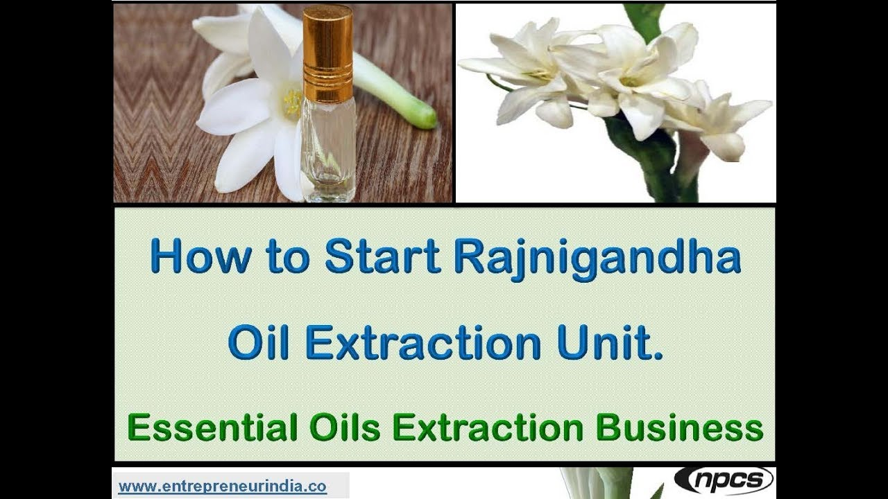 How to start rajnigandha oil extraction unit essential oils how to start rajnigandha oil extraction unit essential oils extraction business izmirmasajfo