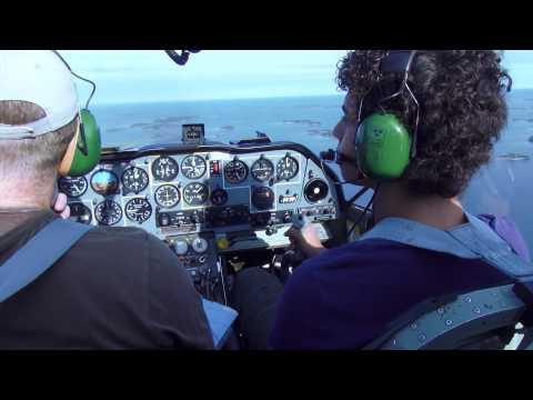 """Scottish Aviation SK-61 """"Bulldog"""""""