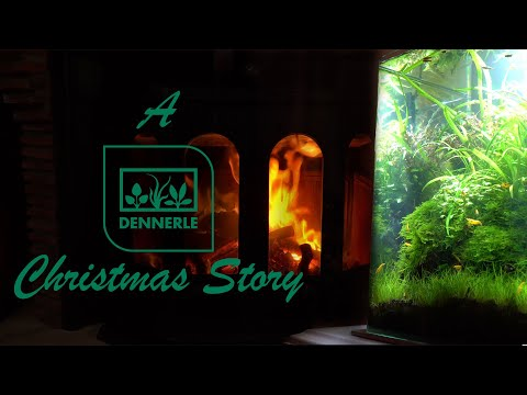 The Dennerle Christmas Story | DENNERLE