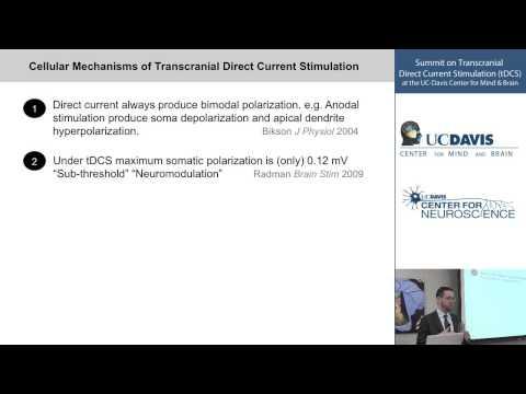 Cellular Mechanisms of Transcranial Direct Current Stimulation (tDCS)