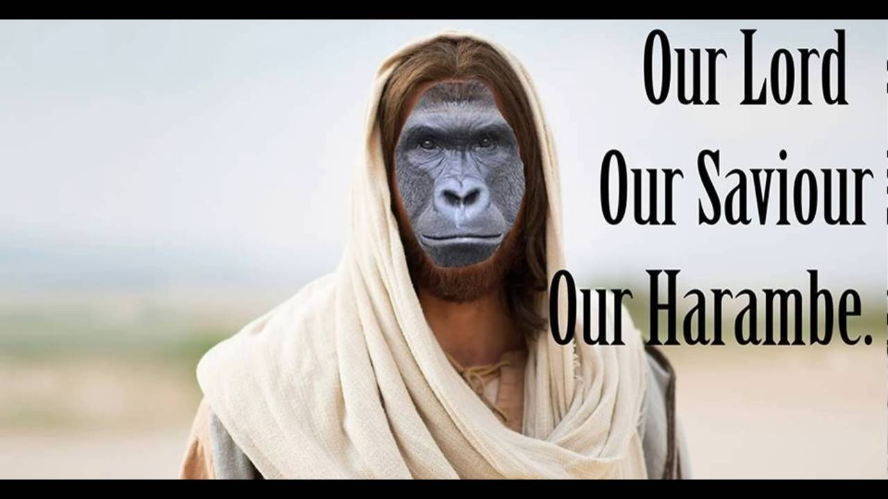 harambe our lord and saviour youtube
