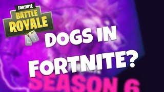 ANIMALS COMING TO FORTNITE? – Season 6 Leaks | Fortnite Battle Royale
