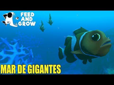Feed and Grow: Fish - MAR DE GIGANTES - GAMEPLAY ESPAÑOL #29