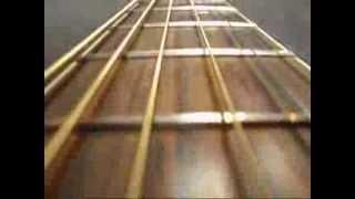 Ibanez Acoustic Guitar & Troubadour Amp - Instrumental Music Center