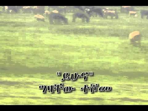 YIHUNA -- Gizachew Teshome.wmv