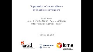 David Zueco - Suppression of superradiance by magnetic correlations