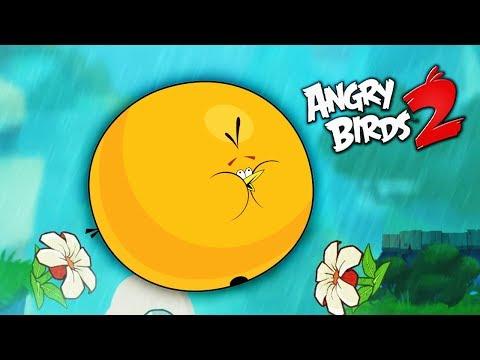 ПУХЛИК всегда ПУХЛИК! Злые птички Энгри Бердс против СВИНЕЙ / Angry Birds 2