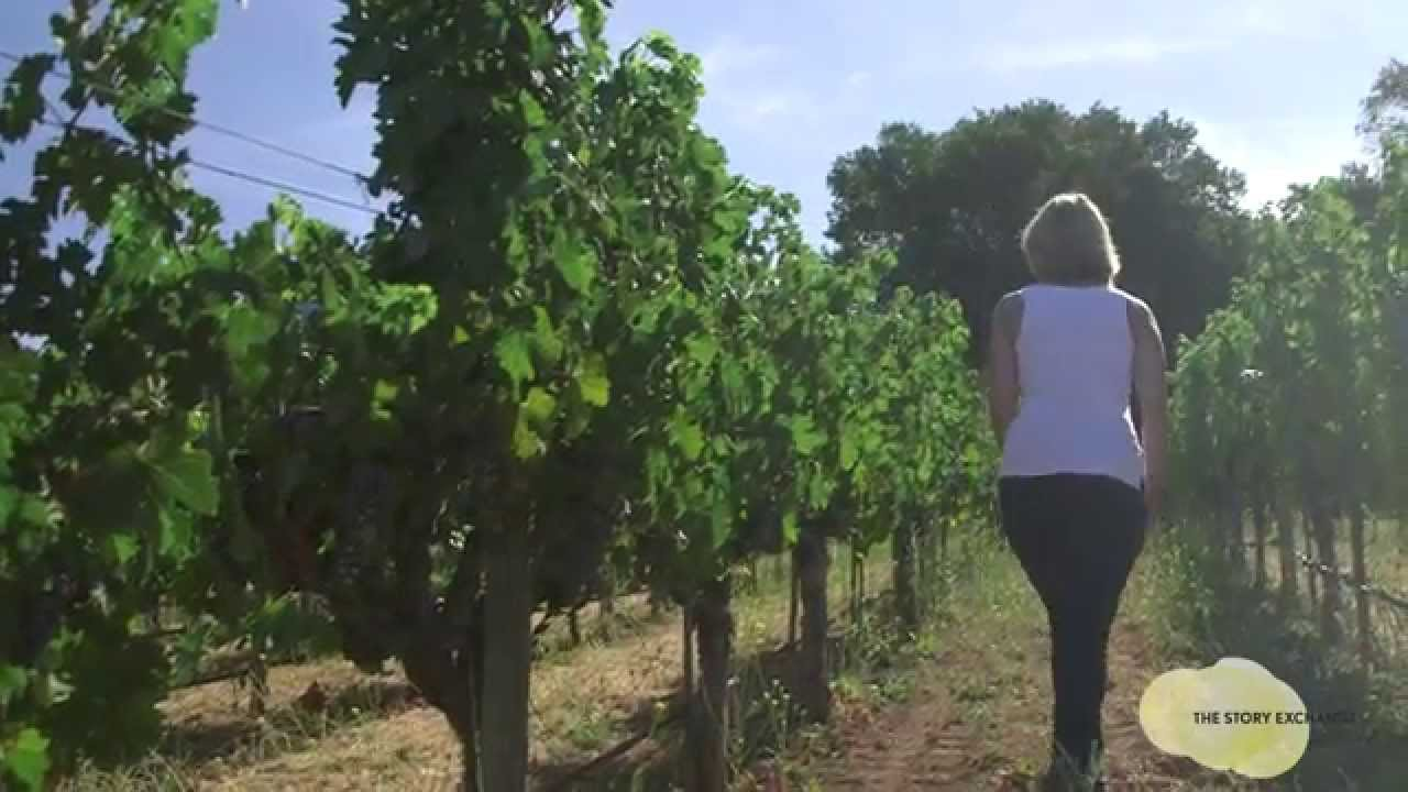 Putting Down Roots in Napa Valley : Women Entrepreneurs #41