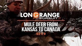 Long Range Pursuit | S3 E9 Mule Deer From Kansas to Canada