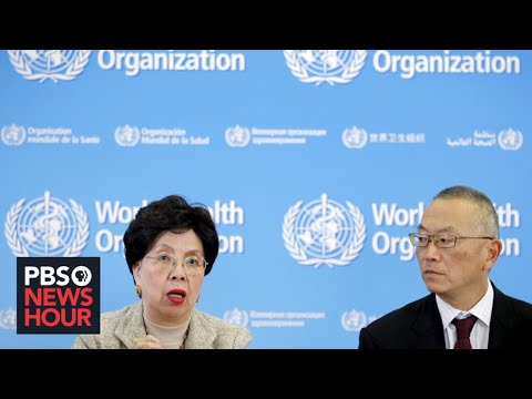 WATCH: The World Health Organization holds news conference on novel coronavirus