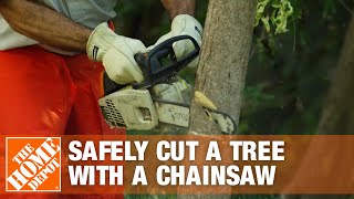 How to Cut a Tree with a Chainsaw Safely
