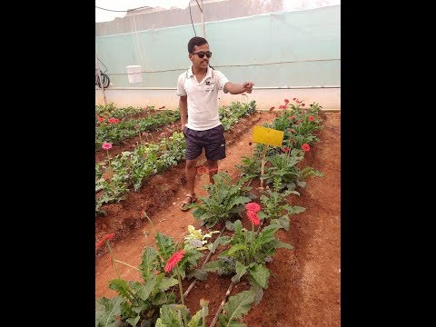 Horticulture presentation of Experimental learning
