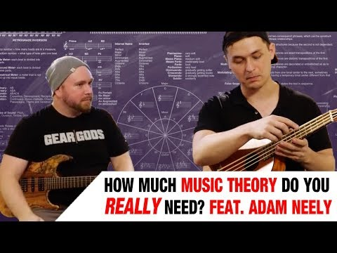 How Much Music Theory Do You REALLY Need? With Adam Neely – Trey's Theory Corner Ep. 16