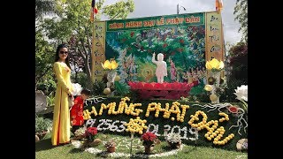 Việt Kiều Mỹ đi Chùa vào ngày LỄ PHẬT ĐẢN// Kinh Tran Cuộc sống mỹ