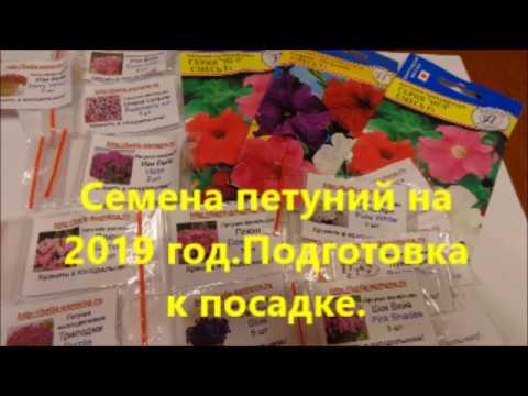Семена петуний на 2019 год.Подготовка к посадке.