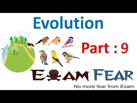 Biology Evolution part 9 (Adaptive Radiation : Marsupials & Placental Mammals) class 12 XII