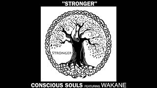Stronger by Conscious Souls featuring Wakane