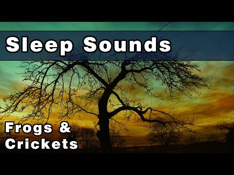 Peaceful FROGS & CRICKETS Sleep Sounds - 12 Hours - The Sounds of Nature, to Help Relax and Unwind