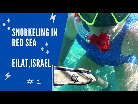 Snorkeling In RED SEA | Journey :CAIRO -SINAI- TABA To EILAT,ISRAEL| Israel \u0026 Egypt Vlog # 1