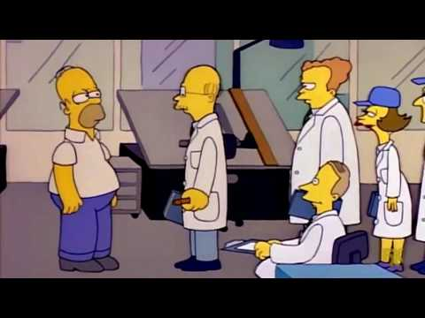 Homer Designs a Car