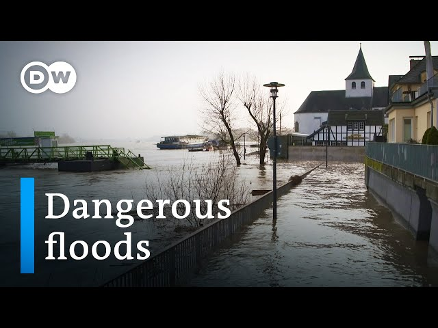 Can nature itself save us from the effects of climate change? | DW Documentary