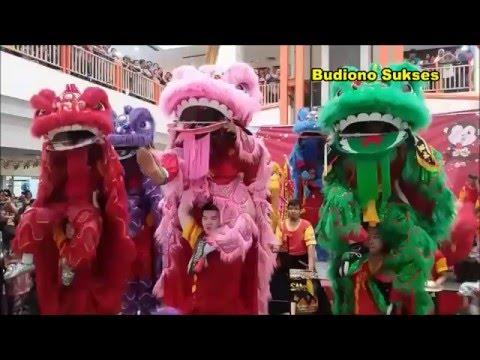 Atraksi 10 Barongsai dan Wushu Gemparkan DTC Wonokromo Surabaya
