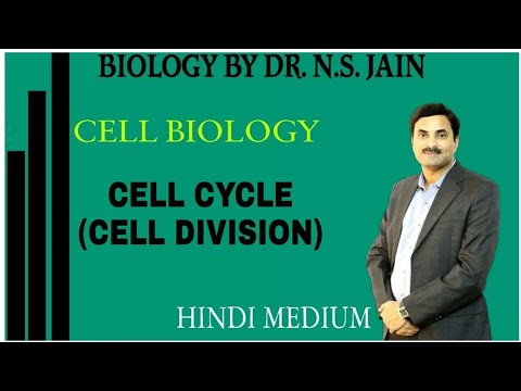 Cell Cycle (Cell Division) for Class 11th in Hindi