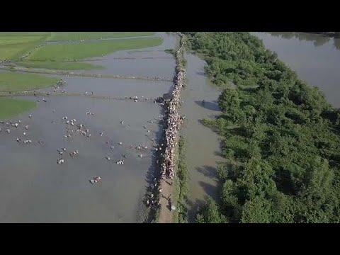 Исход рохинджа из