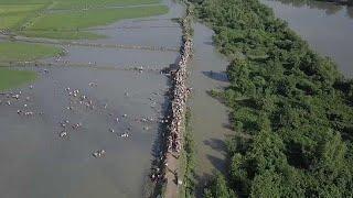 Исход рохинджа из Мьянмы