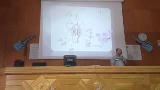 brain stem dr hegazy histology 2