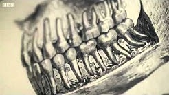 BBC Drills - Dentures and Dentistry An Oral History