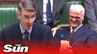 Witty Rees-Mogg jokes about the nuances of Brexit Bill 'limbo'