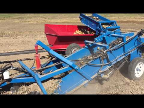 US Small Farm One Row Potato Digger With Collection Wagon